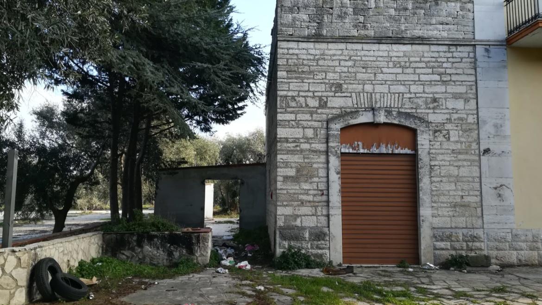Fine della campagna olivicola, a Terlizzi per i lavoratori stagionali immigrati al danno si aggiunge la beffa